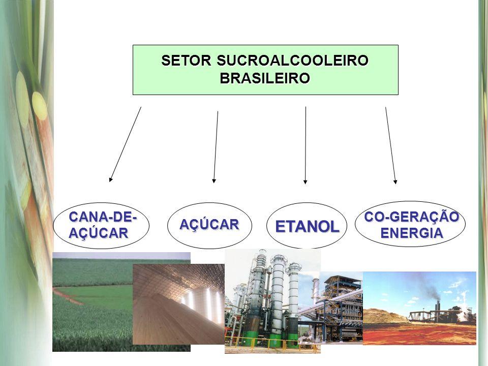SETOR SUCROALCOOLEIRO BRASILEIRO