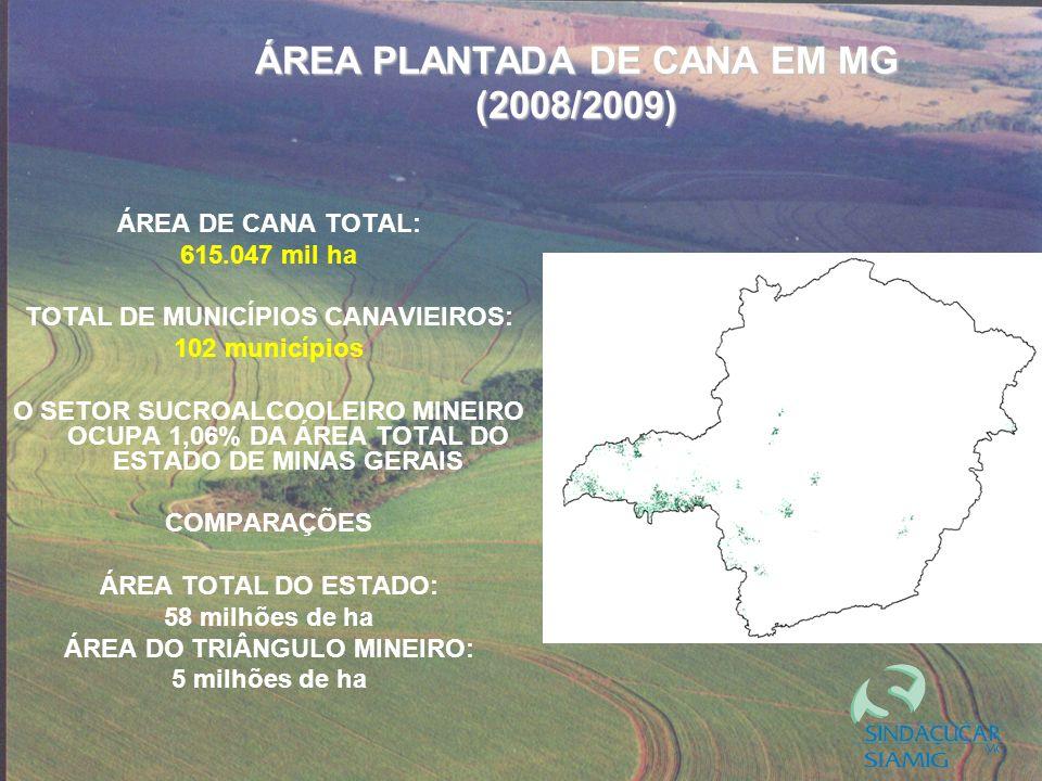 ÁREA PLANTADA DE CANA EM MG (2008/2009)
