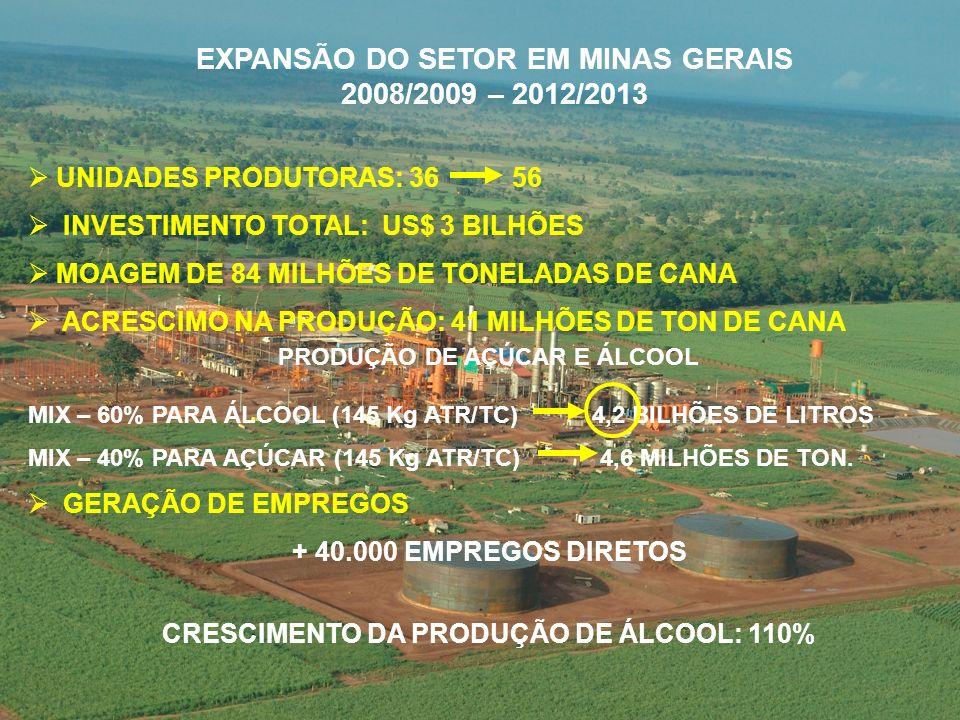 EXPANSÃO DO SETOR EM MINAS GERAIS 2008/2009 – 2012/2013