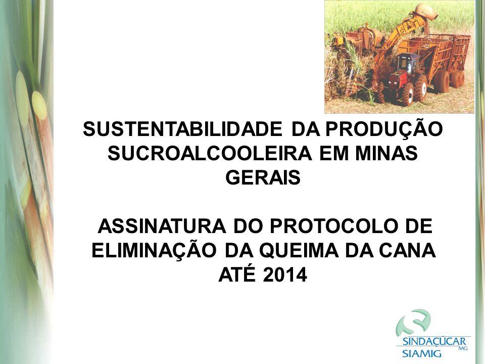 SUSTENTABILIDADE DA PRODUÇÃO SUCROALCOOLEIRA EM MINAS GERAIS
