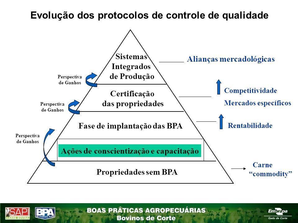 Ações de conscientização e capacitação Comitê Gestor MAPA/SDC