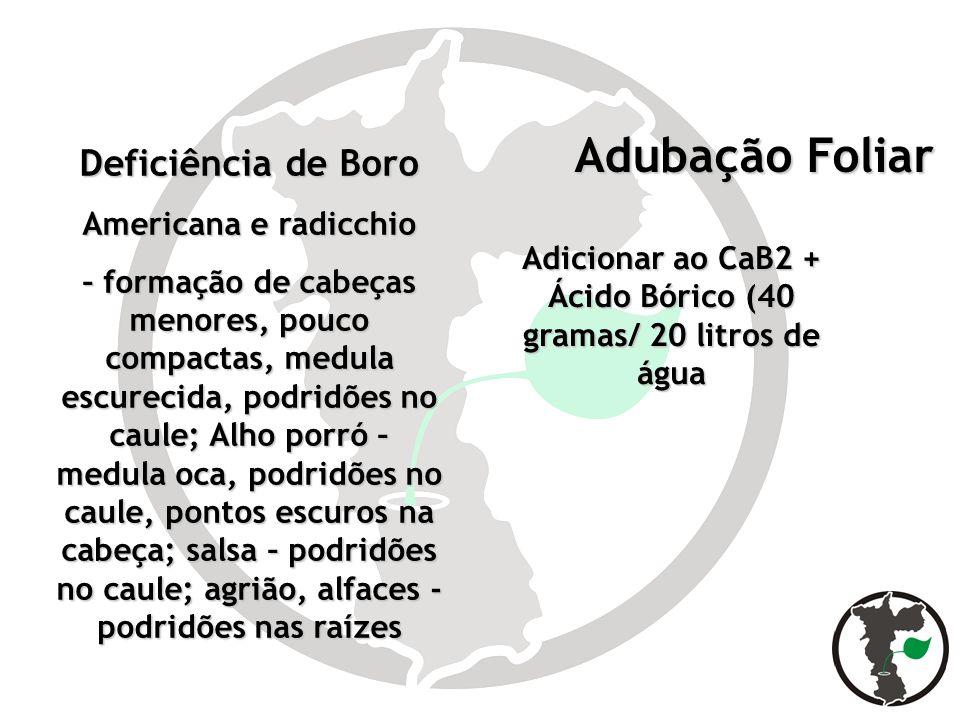 Adicionar ao CaB2 + Ácido Bórico (40 gramas/ 20 litros de água