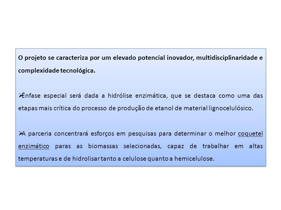 O projeto se caracteriza por um elevado potencial inovador, multidisciplinaridade e complexidade tecnológica.