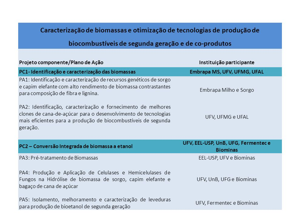 Caracterização de biomassas e otimização de tecnologias de produção de biocombustíveis de segunda geração e de co-produtos