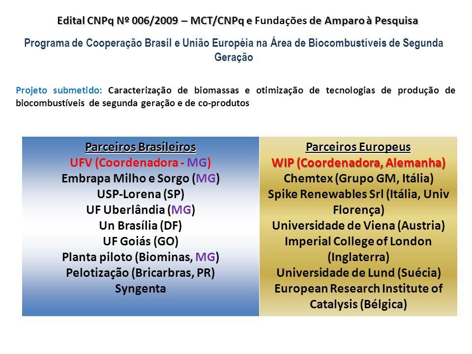 Parceiros Brasileiros UFV (Coordenadora - MG)