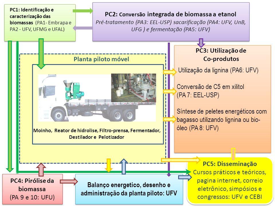 PC4: Pirólise da biomassa (PA 9 e 10: UFU)