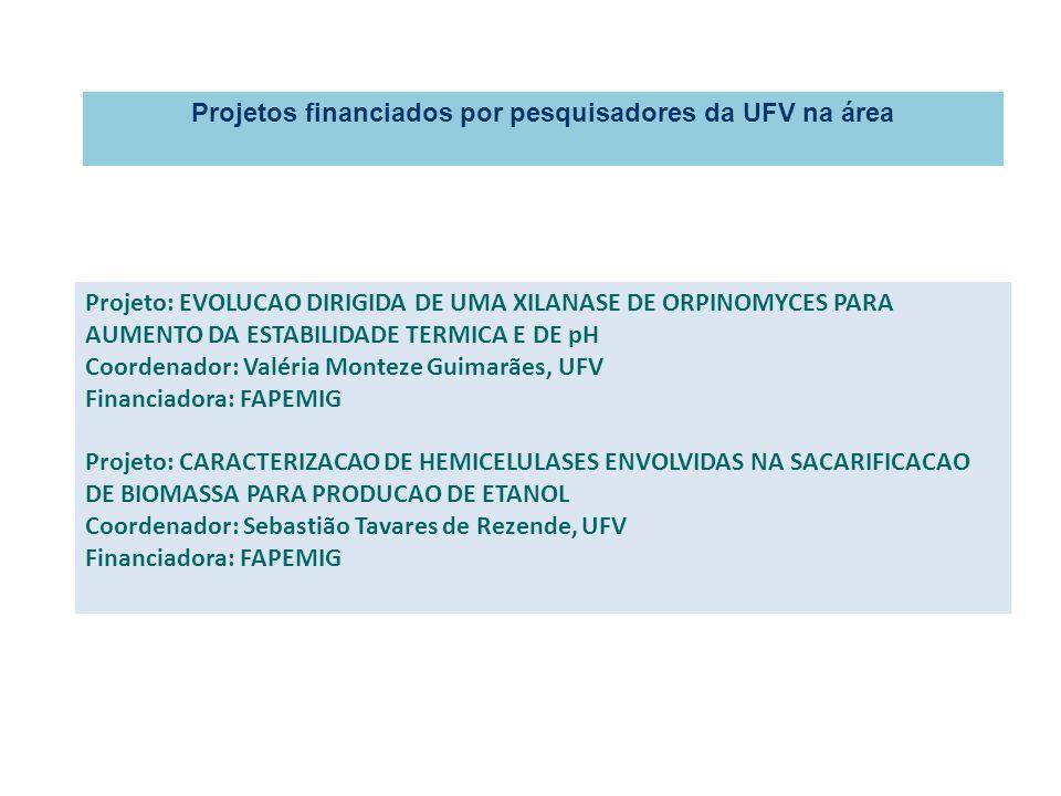 Projetos financiados por pesquisadores da UFV na área