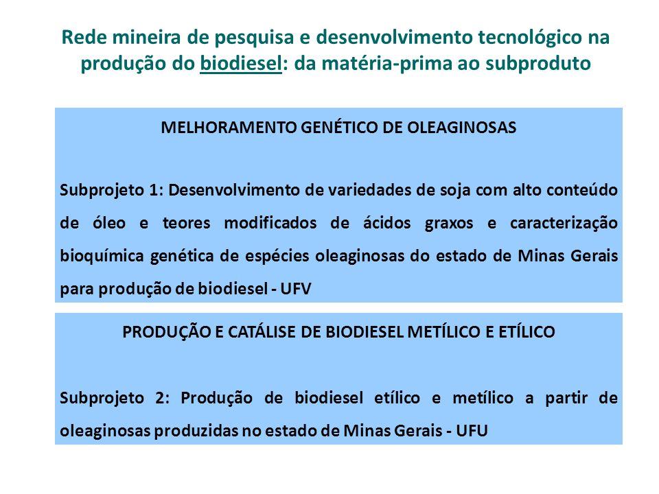 Rede mineira de pesquisa e desenvolvimento tecnológico na produção do biodiesel: da matéria-prima ao subproduto
