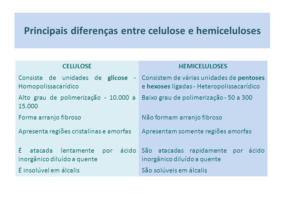 Principais diferenças entre celulose e hemiceluloses