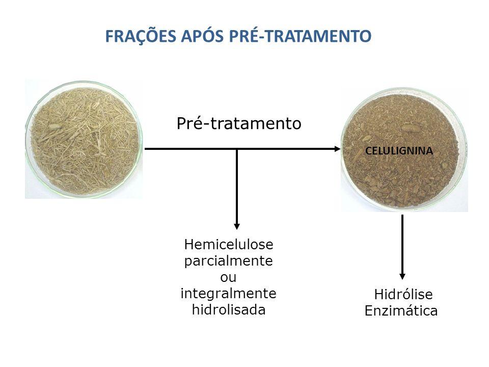 FRAÇÕES APÓS PRÉ-TRATAMENTO