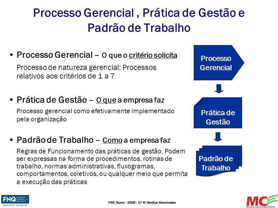 Processo Gerencial , Prática de Gestão e Padrão de Trabalho