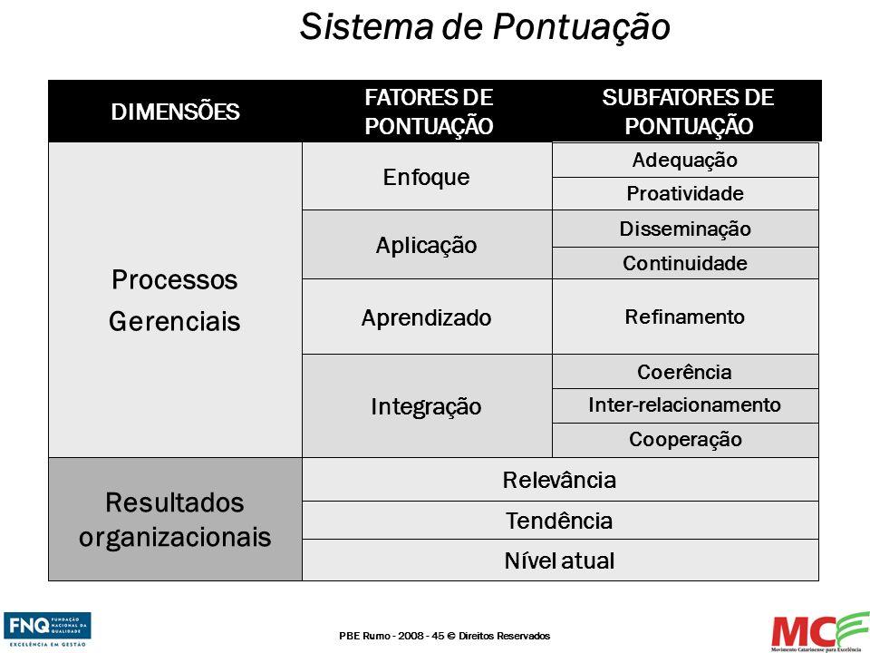 Sistema de Pontuação Processos Gerenciais Resultados organizacionais