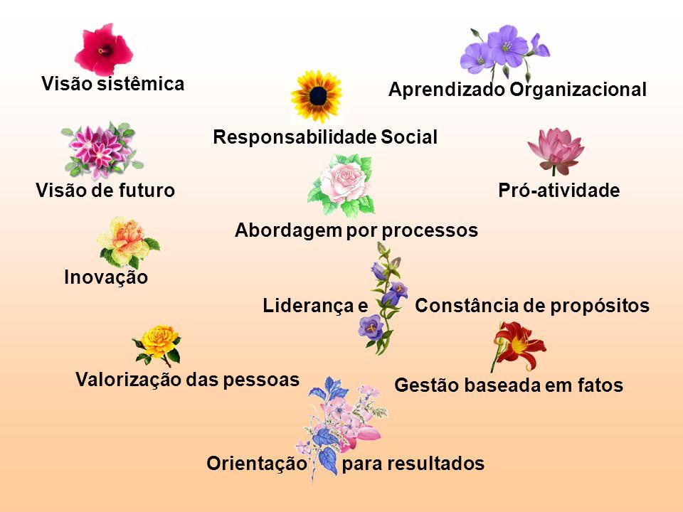 Visão sistêmica Aprendizado Organizacional. Responsabilidade Social. Visão de futuro. Pró-atividade.