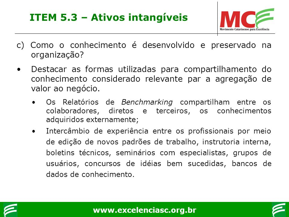 ITEM 5.3 – Ativos intangíveis
