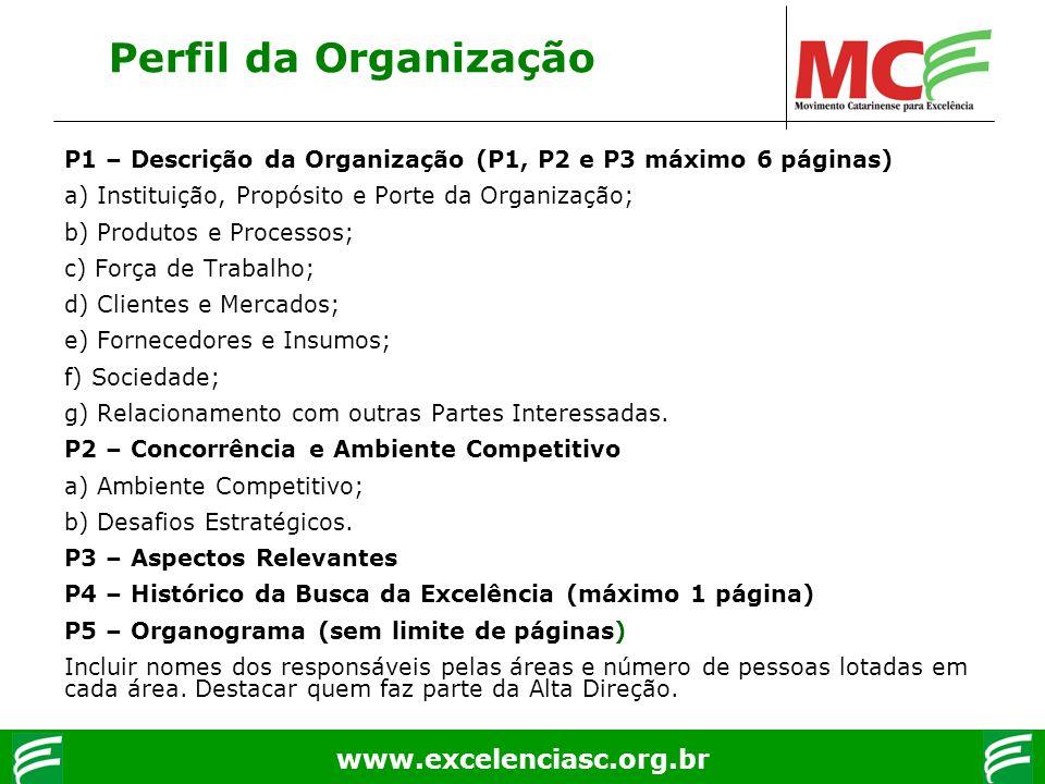 Perfil da Organização P1 – Descrição da Organização (P1, P2 e P3 máximo 6 páginas) a) Instituição, Propósito e Porte da Organização;