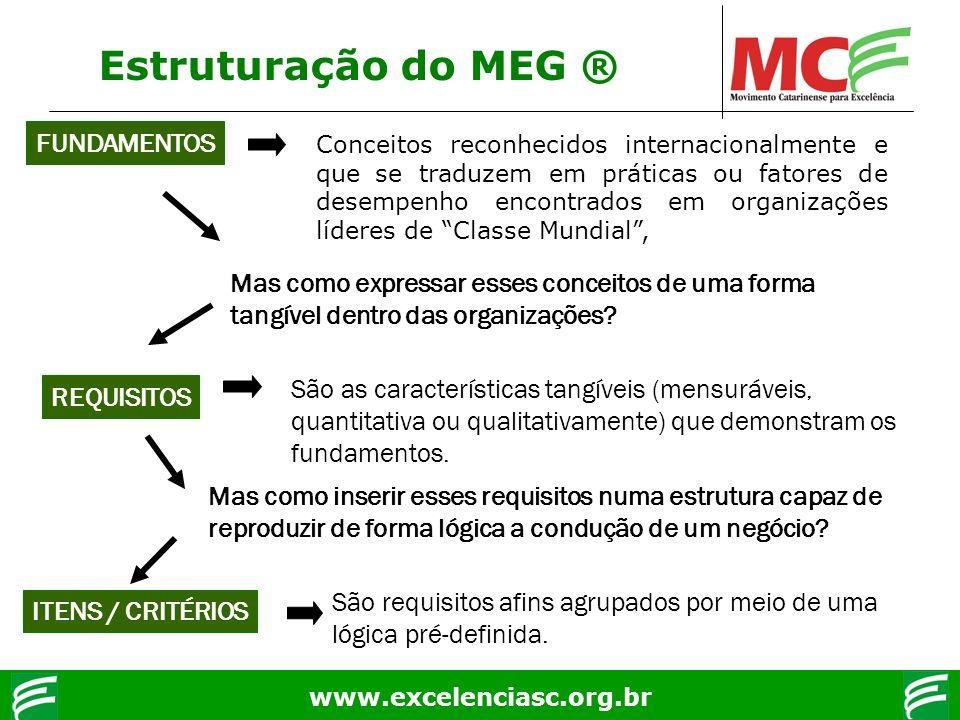 Estruturação do MEG ® FUNDAMENTOS