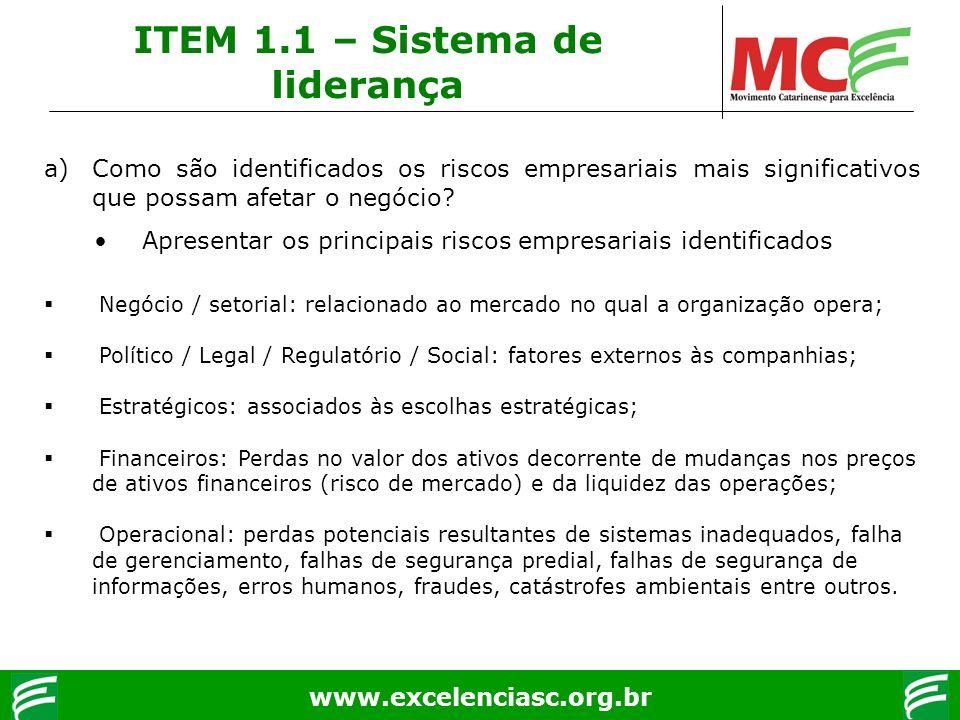 ITEM 1.1 – Sistema de liderança