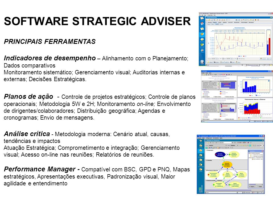 SOFTWARE STRATEGIC ADVISER