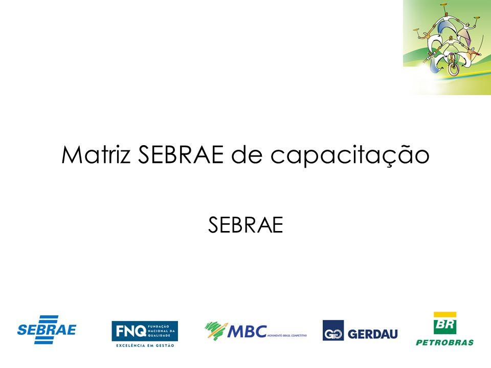 Matriz SEBRAE de capacitação