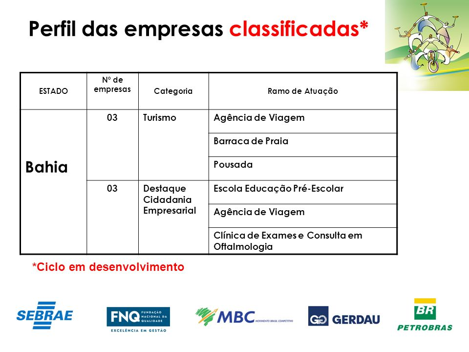 Perfil das empresas classificadas*