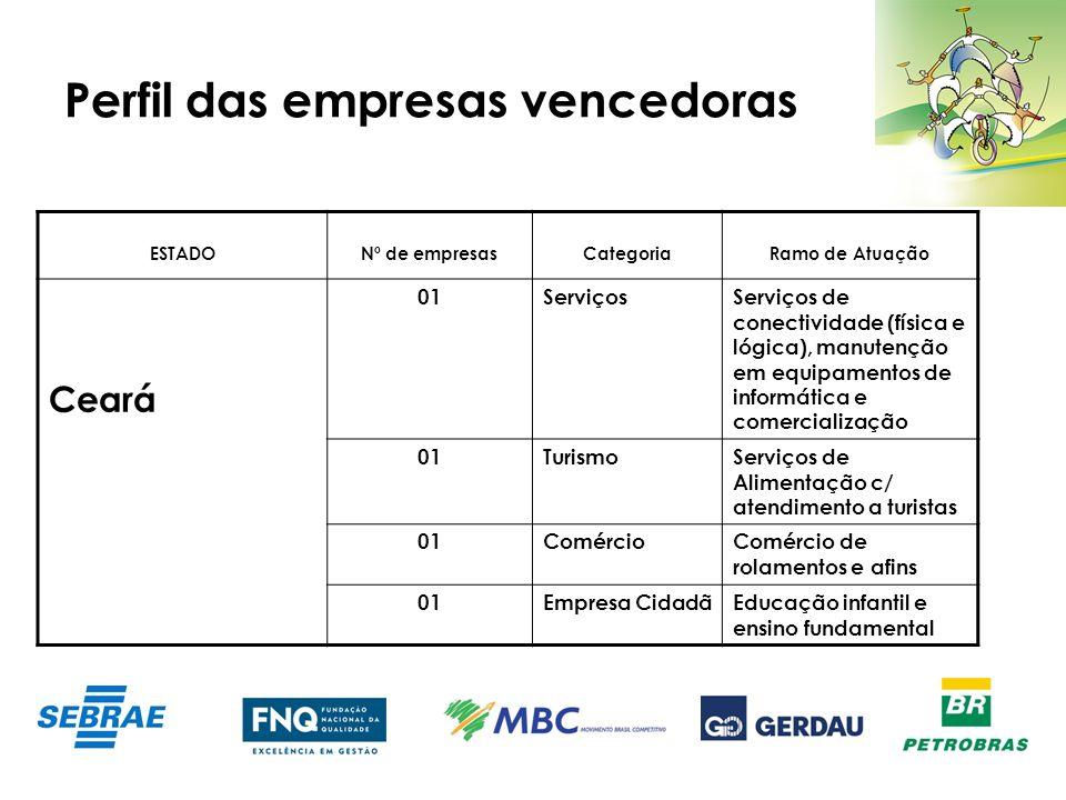 Perfil das empresas vencedoras