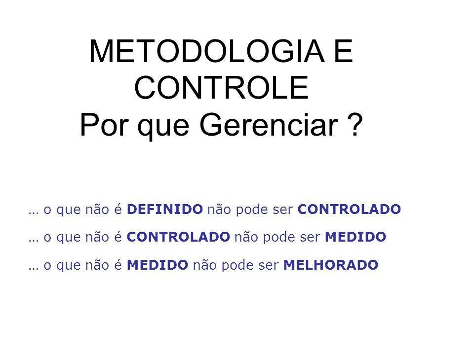 METODOLOGIA E CONTROLE Por que Gerenciar