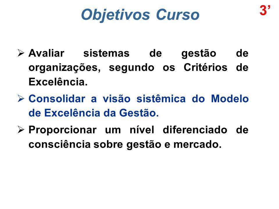 3' Objetivos Curso. Avaliar sistemas de gestão de organizações, segundo os Critérios de Excelência.