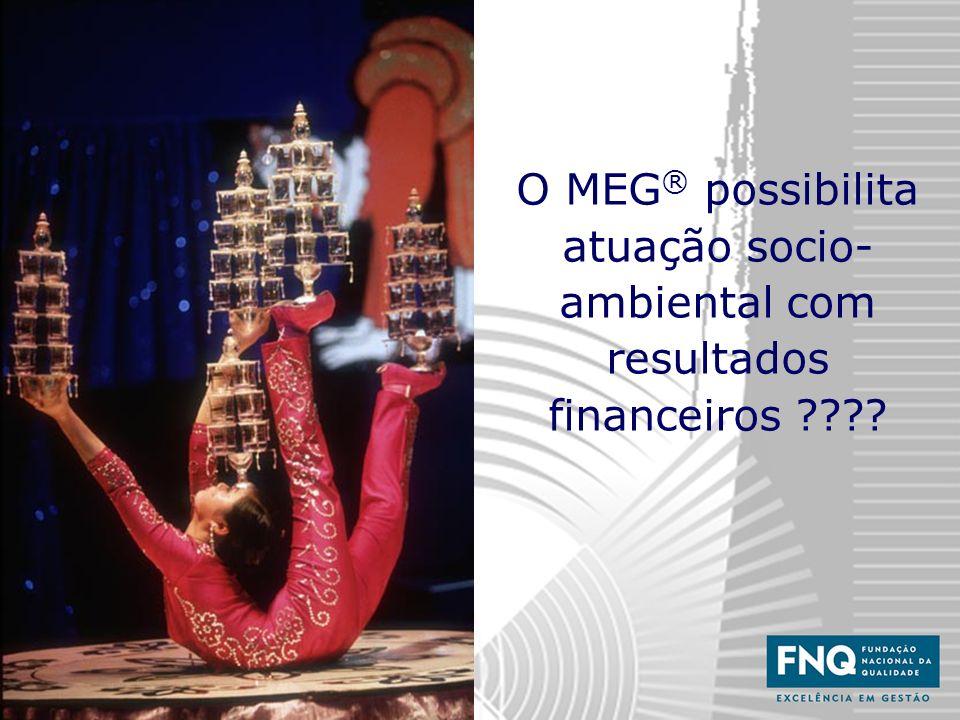 O MEG® possibilita atuação socio-ambiental com resultados financeiros