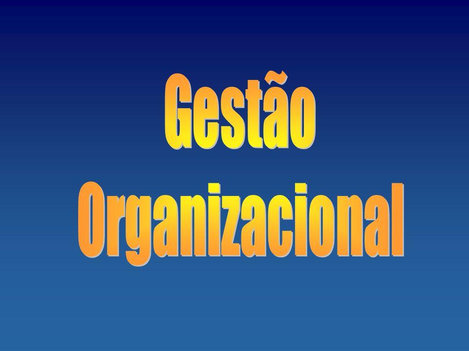 Gestão Organizacional