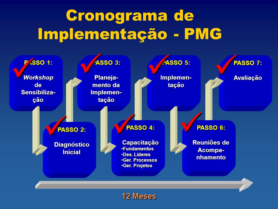Cronograma de Implementação - PMG
