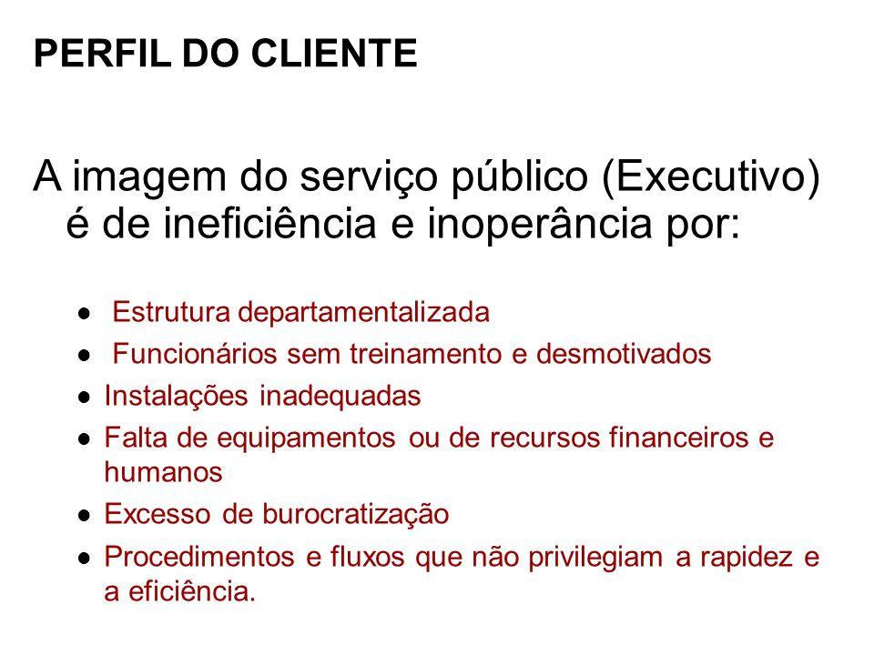 PERFIL DO CLIENTE A imagem do serviço público (Executivo) é de ineficiência e inoperância por: Estrutura departamentalizada.