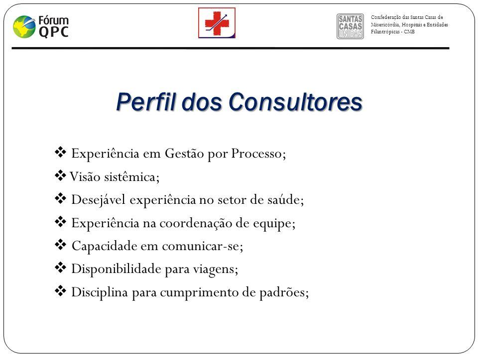 Perfil dos Consultores