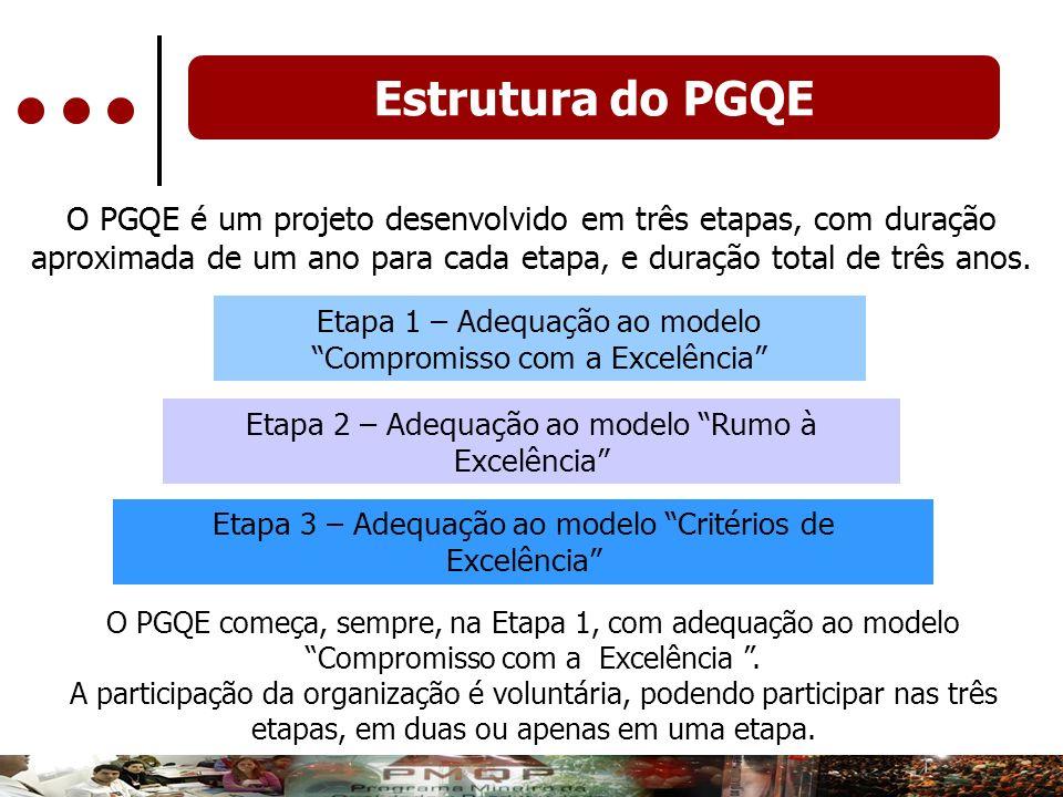 Estrutura do PGQE O PGQE é um projeto desenvolvido em três etapas, com duração aproximada de um ano para cada etapa, e duração total de três anos.