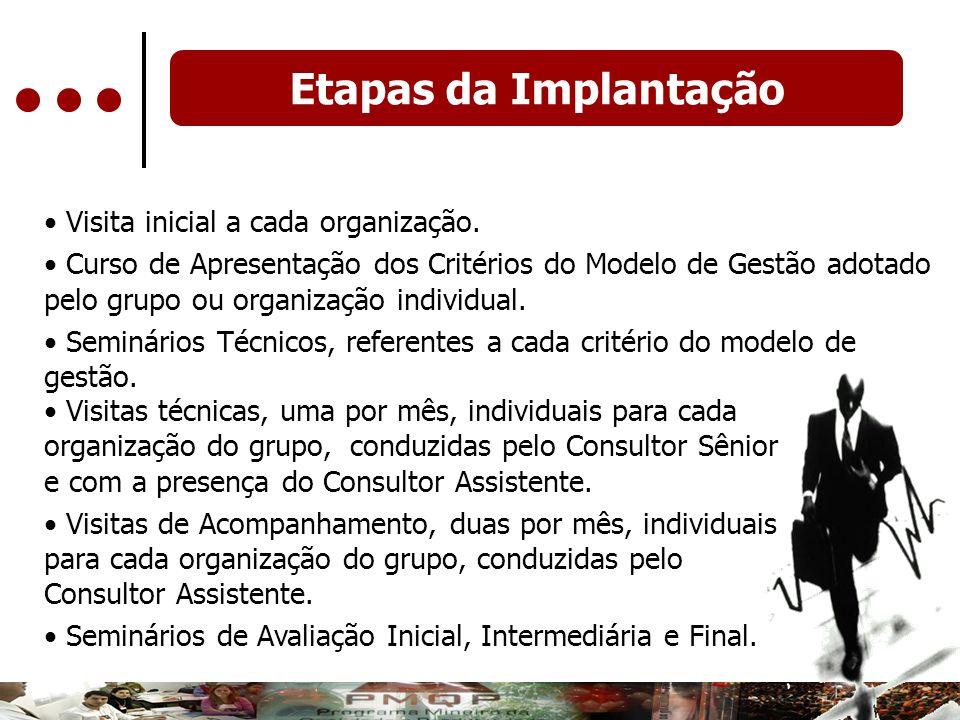 Etapas da Implantação Visita inicial a cada organização.