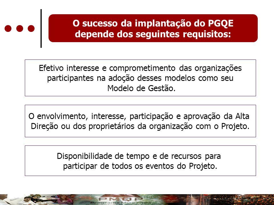O sucesso da implantação do PGQE depende dos seguintes requisitos: