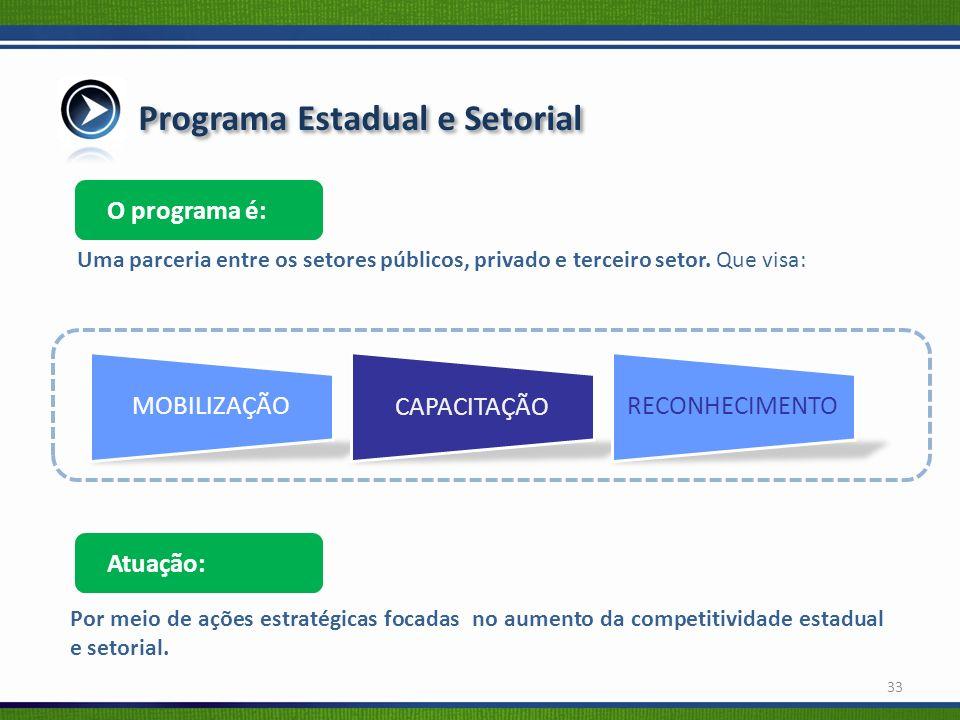 Programa Estadual e Setorial