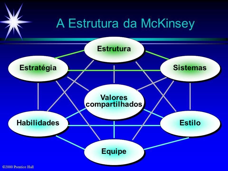 A Estrutura da McKinsey