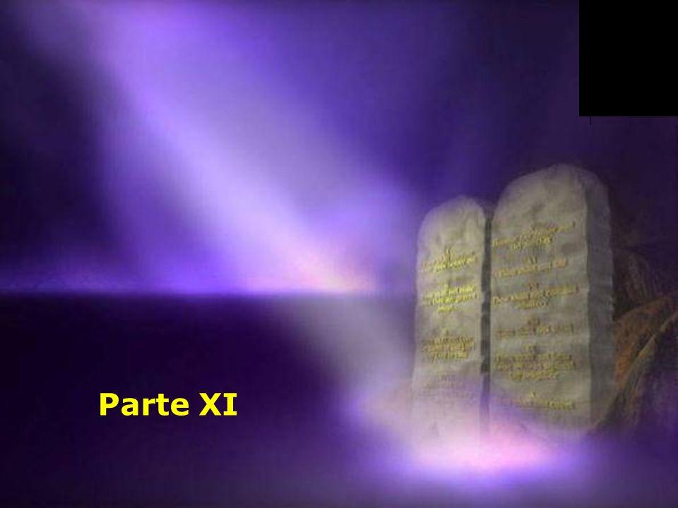 Parte XI