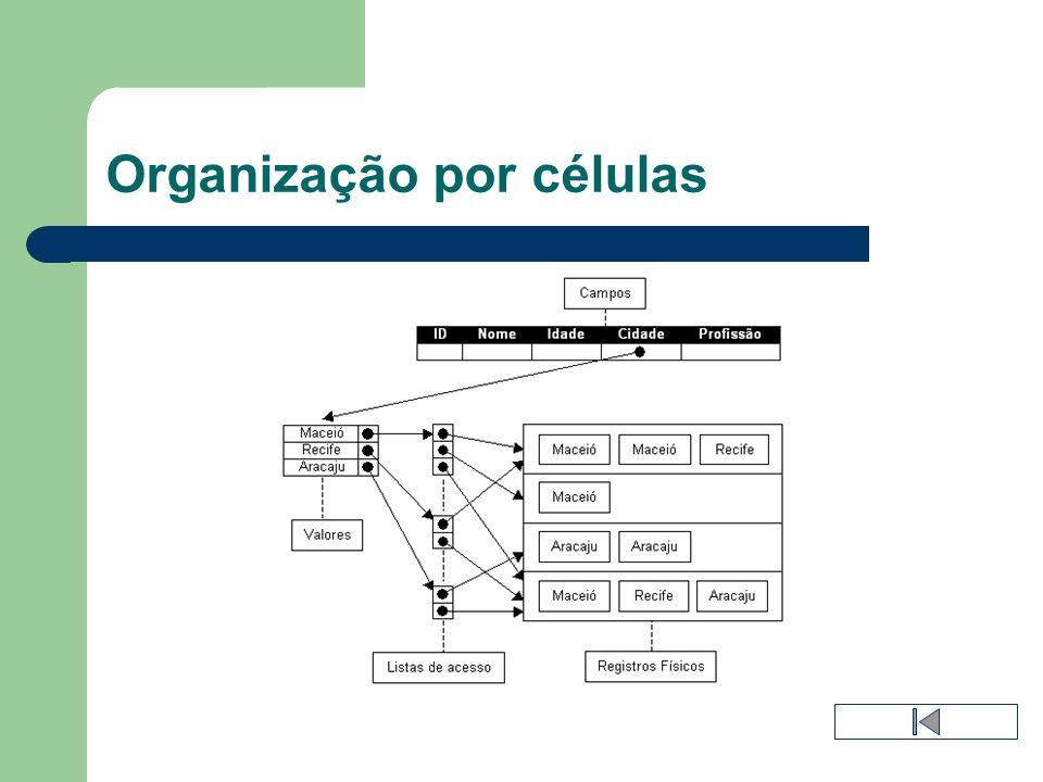 Organização por células