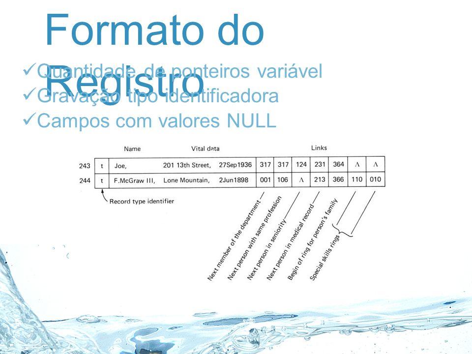 Formato do Registro Quantidade de ponteiros variável