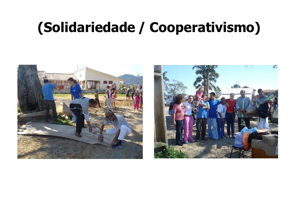 (Solidariedade / Cooperativismo)