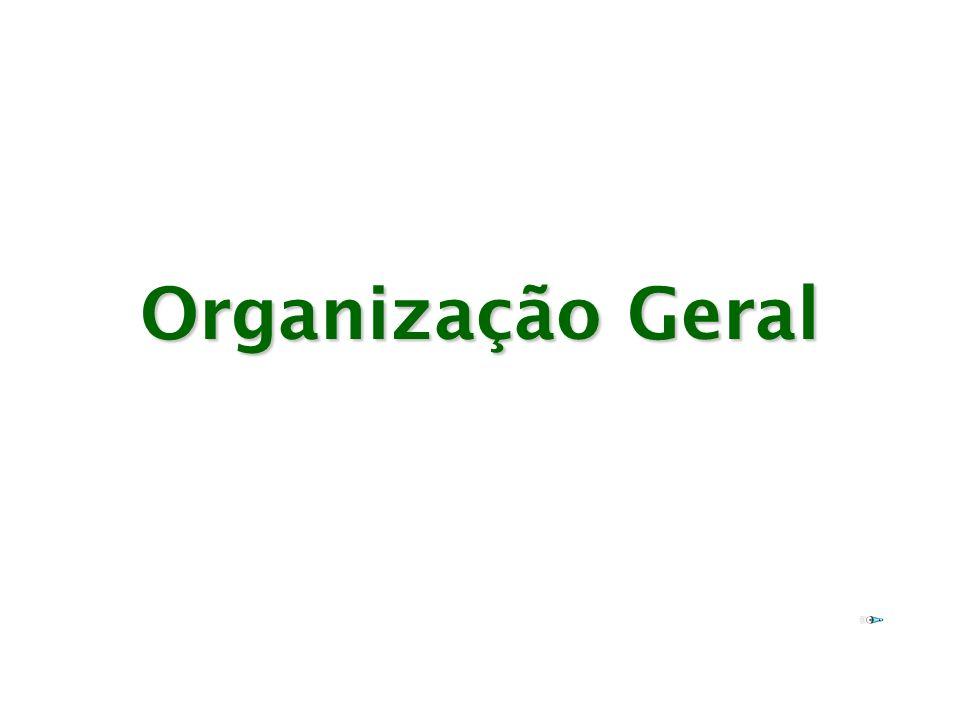 Organização Geral