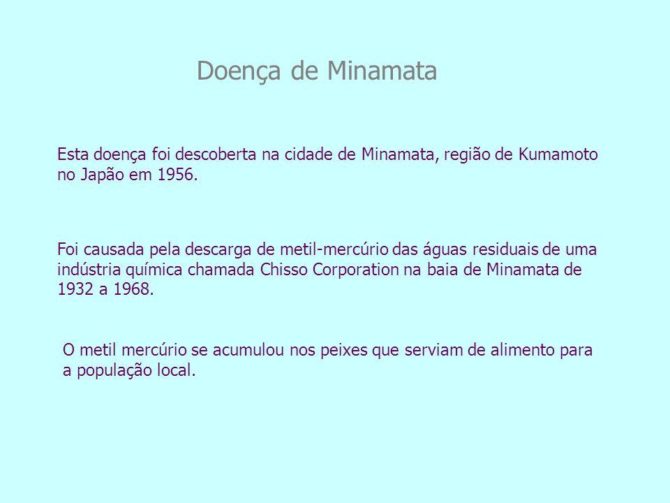 Doença de Minamata Esta doença foi descoberta na cidade de Minamata, região de Kumamoto no Japão em 1956.