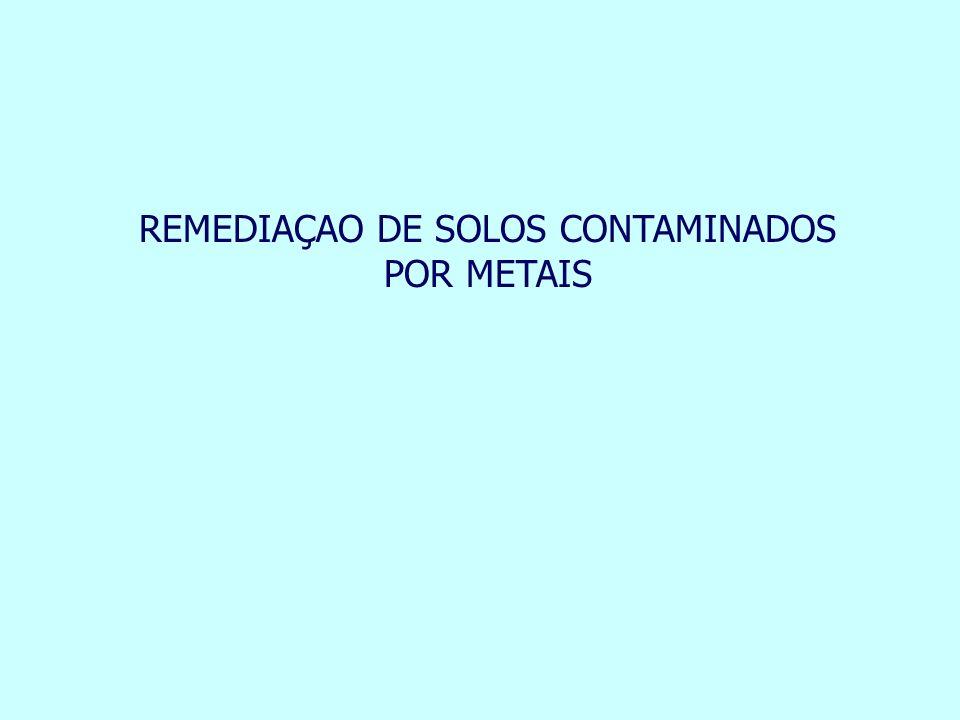 REMEDIAÇAO DE SOLOS CONTAMINADOS POR METAIS