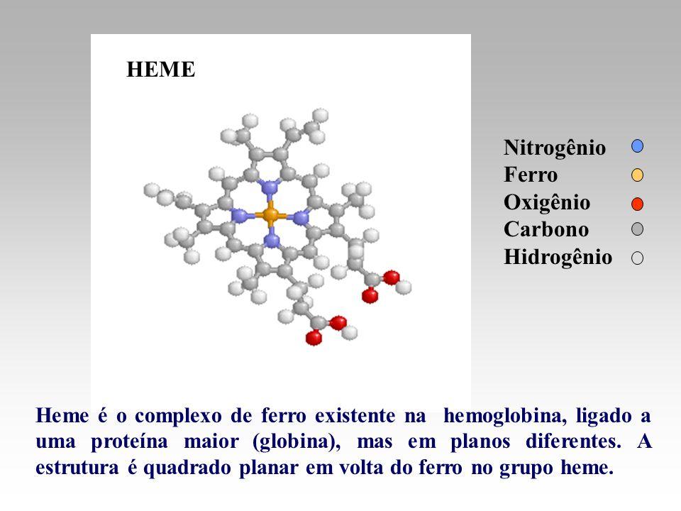 HEME Nitrogênio Ferro Oxigênio Carbono Hidrogênio