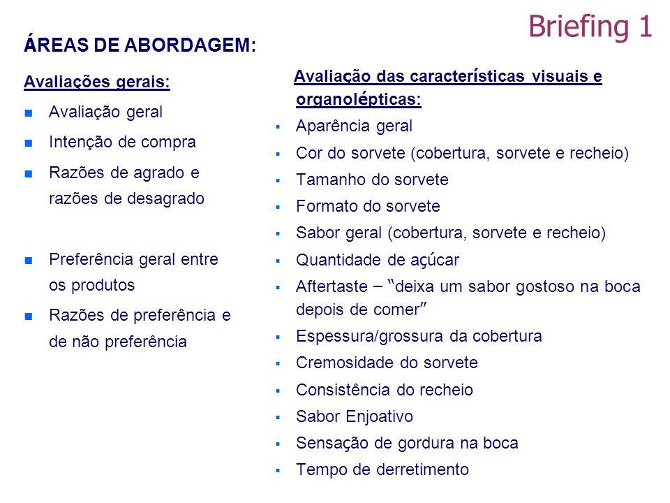 Briefing 1 ÁREAS DE ABORDAGEM: