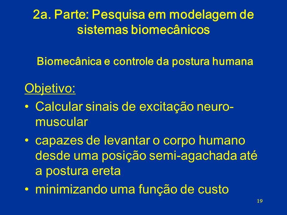 2a. Parte: Pesquisa em modelagem de sistemas biomecânicos Biomecânica e controle da postura humana