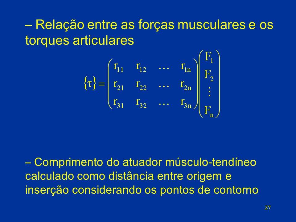 Relação entre as forças musculares e os torques articulares