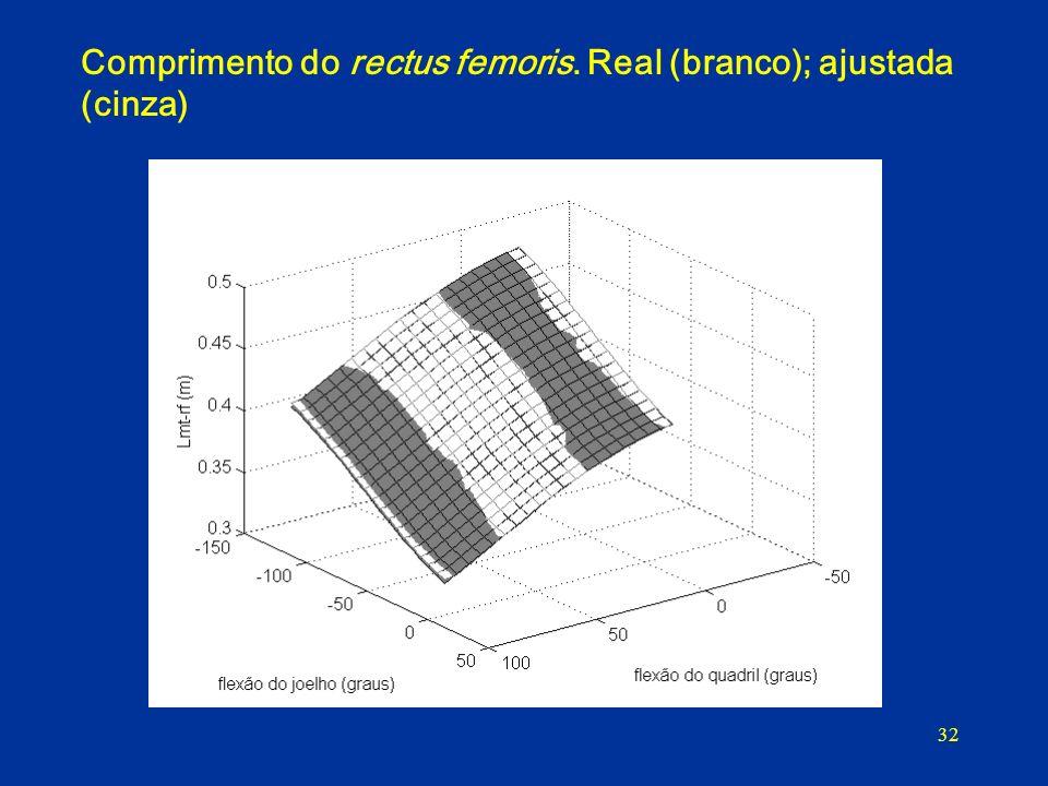 Comprimento do rectus femoris. Real (branco); ajustada (cinza)