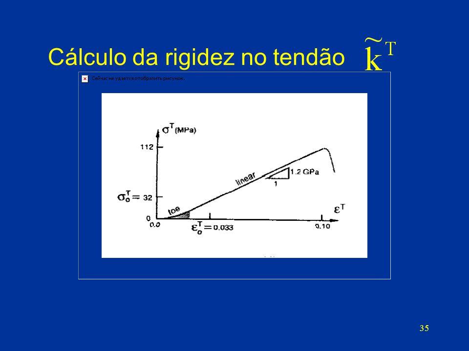 Cálculo da rigidez no tendão